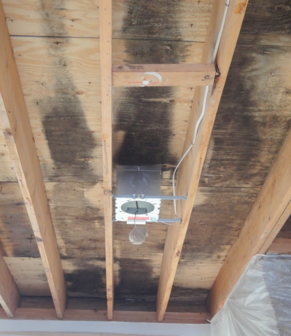 Ceiling Condensation Summer