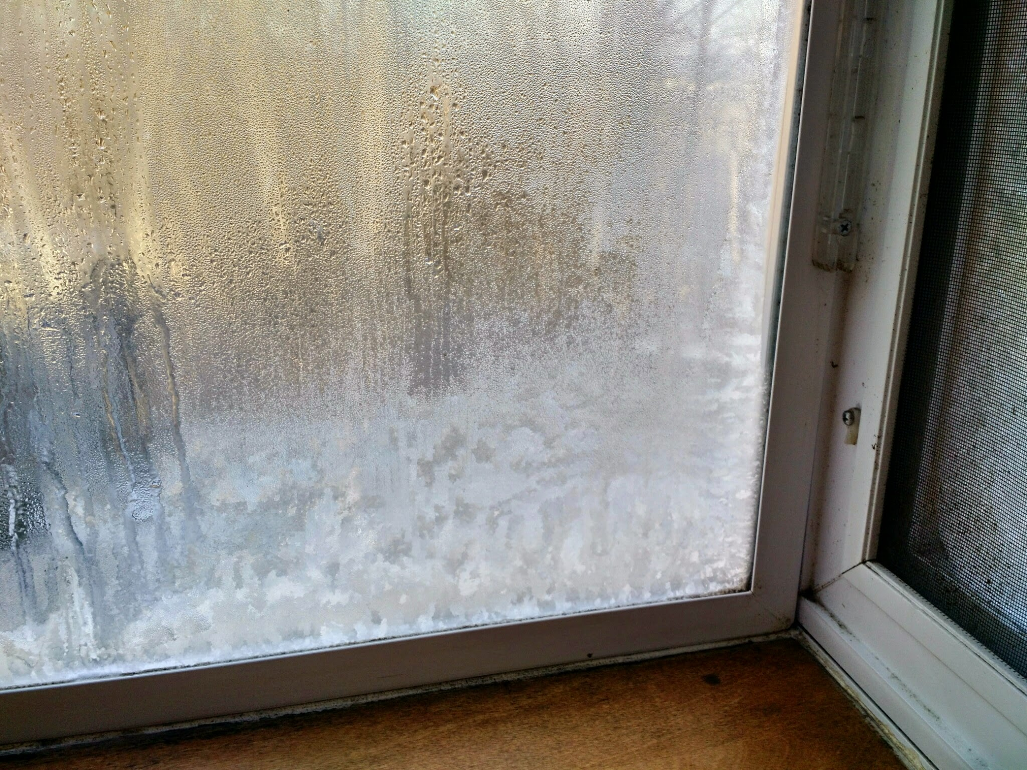 Water and Ice on a Cold Window